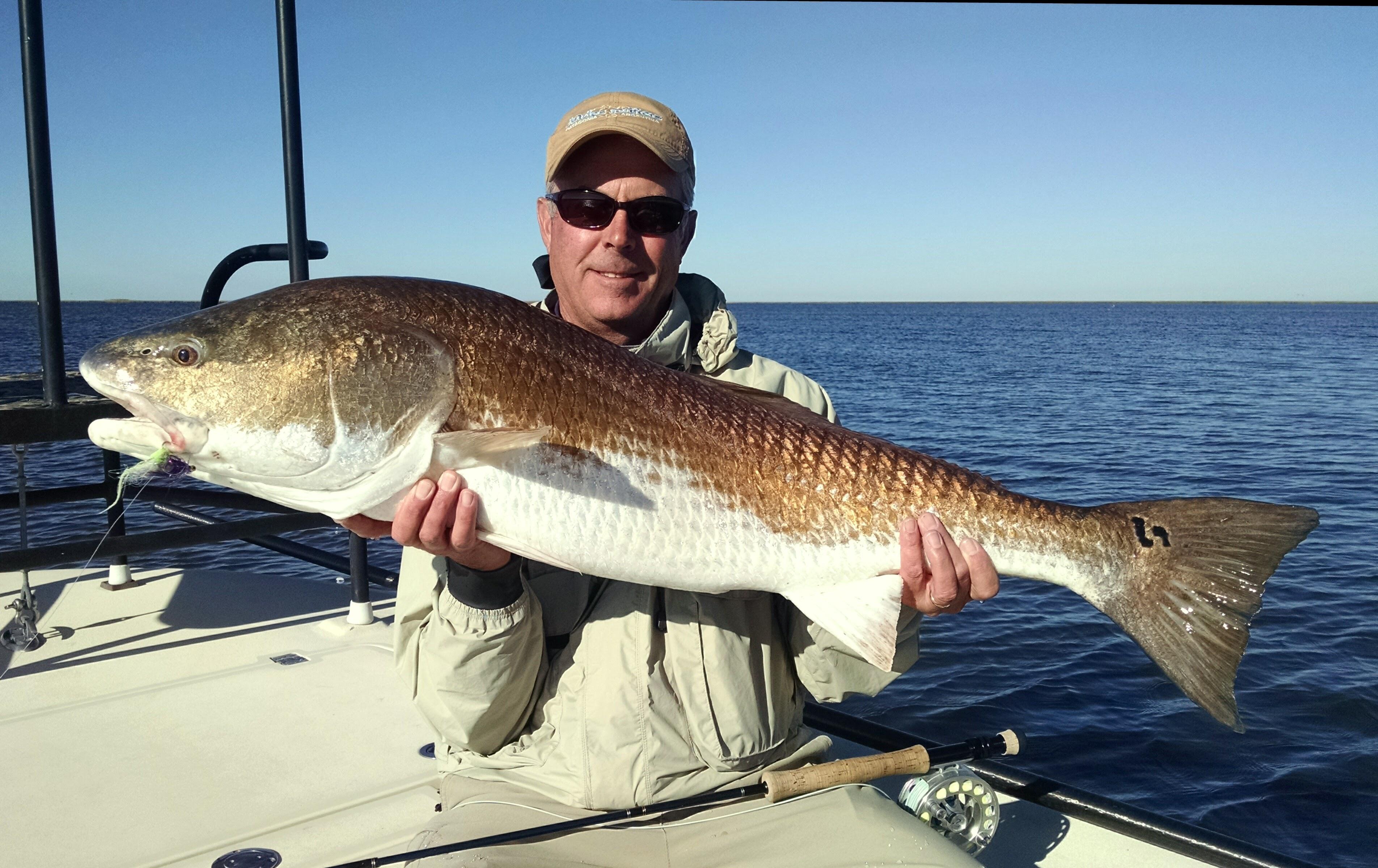 Louisiana Fishing Reports | Adventure South Guide Service