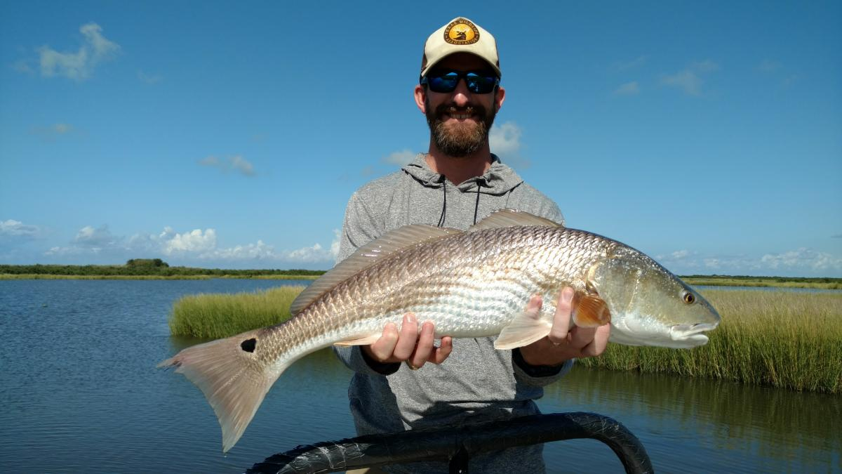 Fly Fishing Louisiana Redfish1
